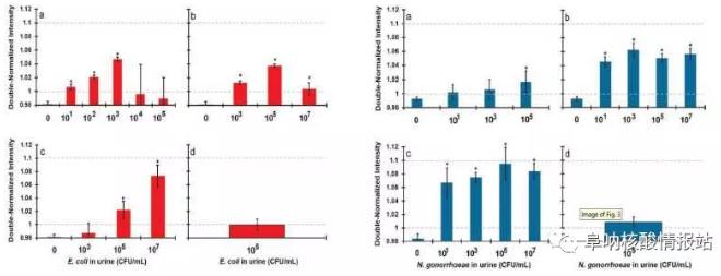 图2. 大肠杆菌(左)和淋球菌(右)的特异性及灵敏性检测