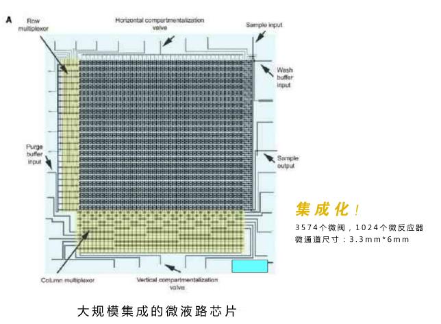 微流控芯片实验室技术优势:大规模集成的微液路芯片