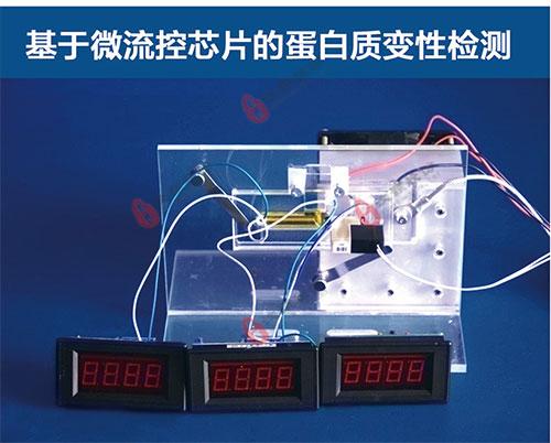 基于微流控芯片的蛋白质变性检测