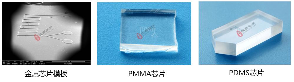 金属芯片掩膜,PMMA,PDMS芯片