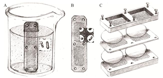 图3分离芯片原位培养微生物的示意图