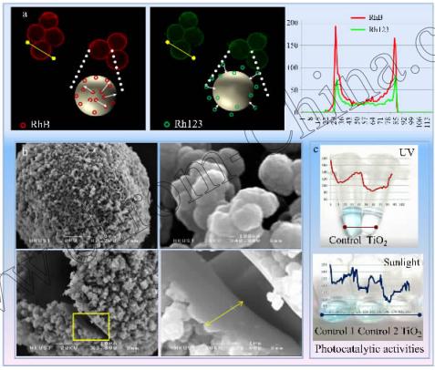 图!二氧化钛微球的形态和功能表征