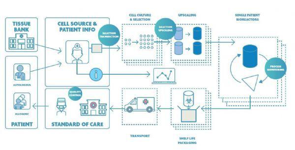 标示了纳电子学潜在影响(以蓝色圆圈标示)的CAR-T细胞疗法