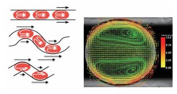 图3微通道中嵌段流液滴内部的涡流矢量图