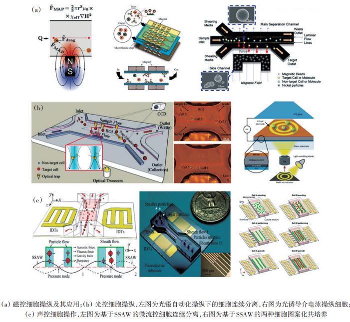 图4磁、光、声控细胞操纵