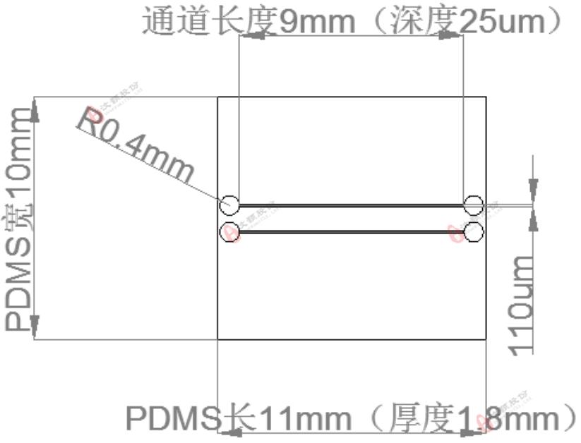 芯片通道结构示意图