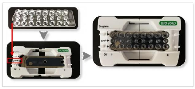 将8孔微滴生成板打开包装,安装到支架上,注意微滴生成板的方向与支架上标记方向一致