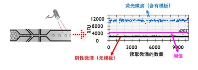 微滴的相对荧光值进行记录