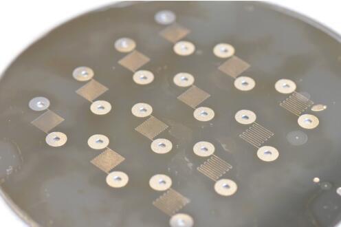 通道宽度100um和通道间距200~600um的晶圆级阳极键合钛微流控器件阵列