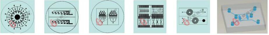 微流控芯片设计加工服务