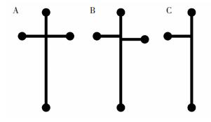 图63种不同的微芯片通道结构:(A)十字交叉结构;(B)Double-T交叉结构;(C)T型结构
