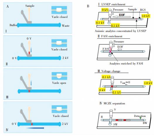 图7两种预浓缩方法。(A)采用气动阀结构[63]和(B)采用LVSEP及FASI对样品进行浓