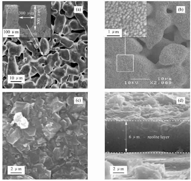 图2不锈钢微通道内表面、引入晶种以及沸石生长成膜的电镜照片