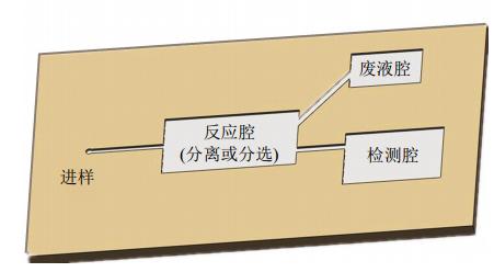 图1微流控芯片结构示意图