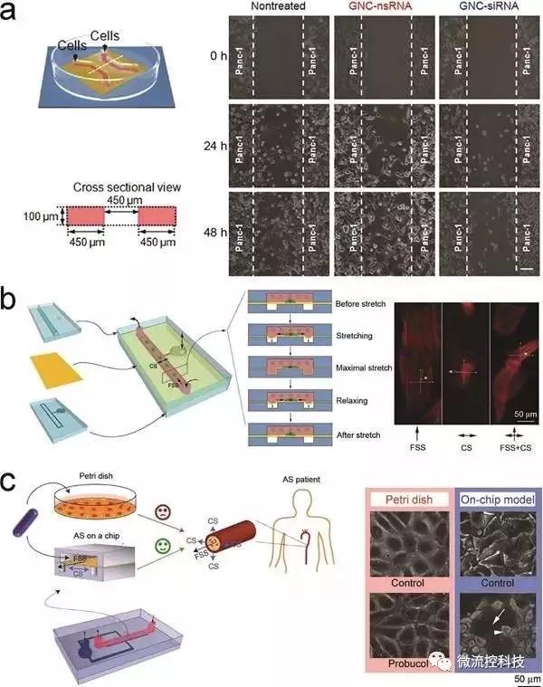 图8.基于微流控芯片的药物筛选
