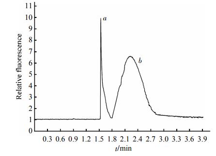 Fig.3EletropherogramofthemixturesofstandardHDLand2滋gHDL2SeparationconditionswerethesameasdescribedinFigure2.