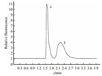 Fig.4EletropherogramofthemixturesofstandardHDLand2滋gHDL3SeparationconditionswerethesameasdescribedinFigure2.