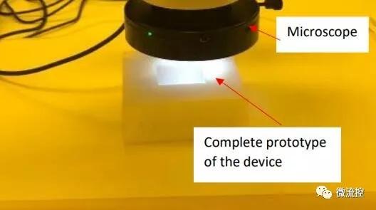组装后的微流控芯片的PDMS顶层和底层