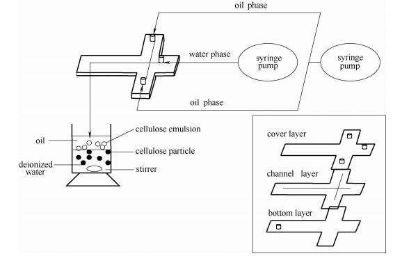 微流芯片和纤维素微球制备示意图
