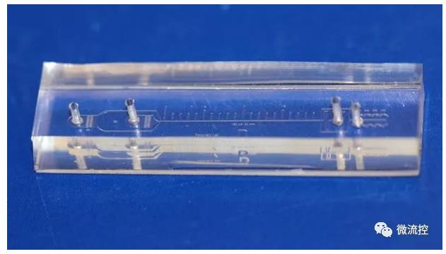 原型装置可检测微小血液样本中超过 90% 的肿瘤细胞(图自:Ian Papautsky)