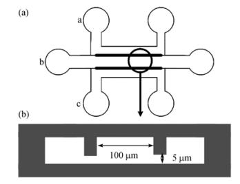 图1芯片的结构示意图
