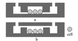 图3两种芯片结构示意图