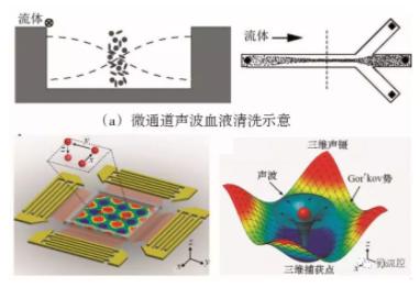 图7 基于声波技术的微流控芯片上的细胞操控