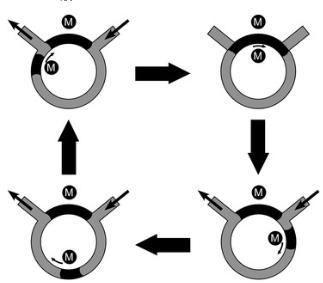 图2.圆形铁磁流体泵的主要草图