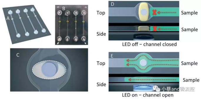 图1.LED灯控制下光敏水凝胶阀的开启和闭合