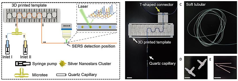 基于软管微流控的动态流体SERS平台用于无标记细胞检测