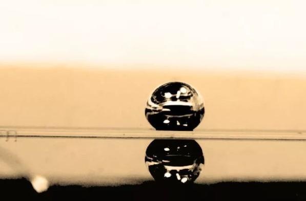 简化血细胞研究的微型离心机式微流控装置,解锁器官芯片新可能