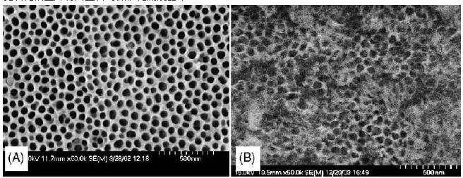 图2. 阳极氧化微反应器的表面形态:(A)未水热处理,(B)水热处理后