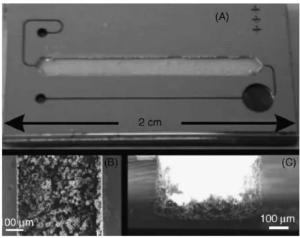 图5. 在火焰喷雾沉积催化剂后用微反应器的样品架的照片