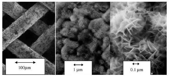 图8. 具有Raney型外表面的不同放大倍数的镍栅催化剂的SEM图像