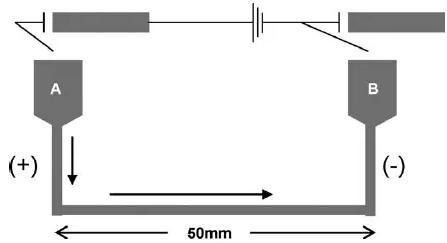 图13. 用于Suzuki偶联反应的毛细管微反应器的示意图