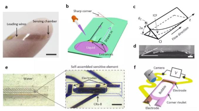 图1 基于内角流的微气泡传感器设计原理