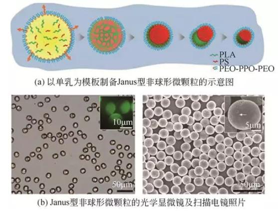单乳模板法制备Janus型非球形微颗粒