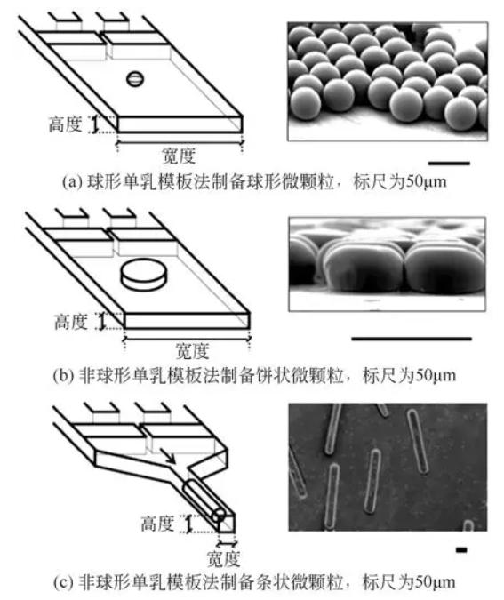 非球形单乳模板法制备非球形微颗粒
