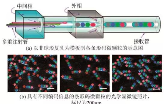 非球形复乳模板法制备非球形微颗粒