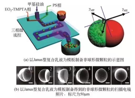 Janus型复合乳液模板法制备非球形微颗粒