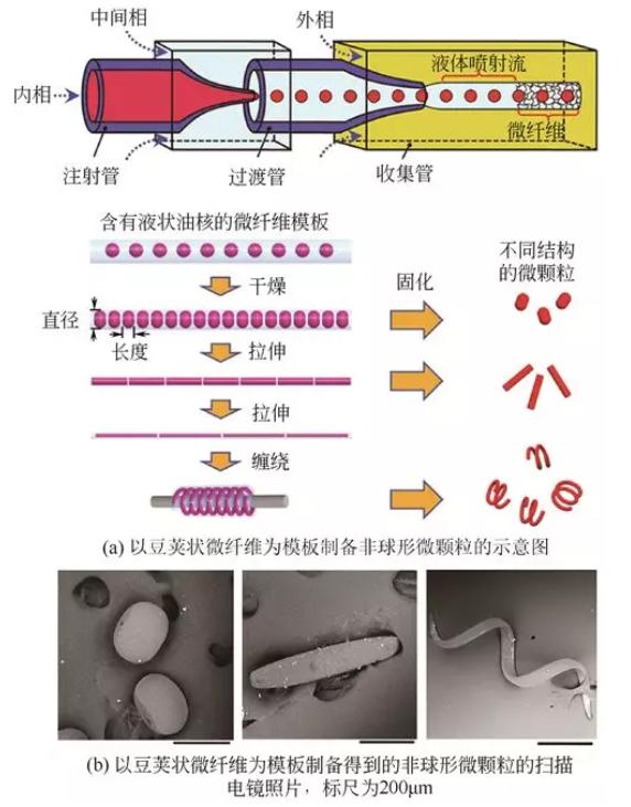 豆荚状微纤维模板法制备非球形微颗粒