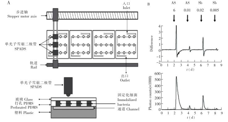流通式生物传感器示意图及响应曲线