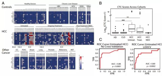 图2.微流控CTC-iChip系统能够特异地识别肝癌细胞。