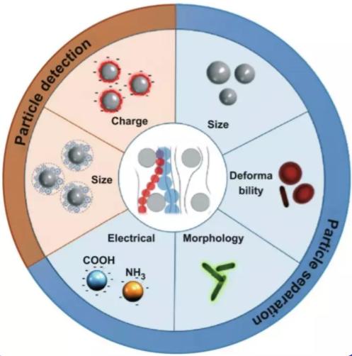 DLD知多少?新加坡NSU综述带你了解微流控生物医学新技术!