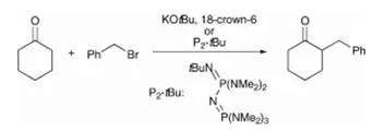 方案3 烯醇酯的直接烷基化反应
