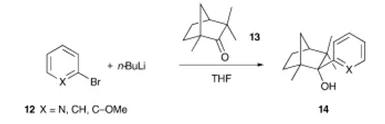 方案6 使用芳基锂试剂的原位淬火方案