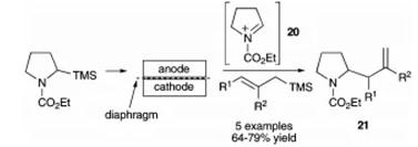 方案10 烯丙基硅烷与N-酰亚胺离子的电化学偶联反应