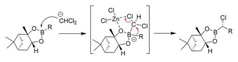 图2 Matteson homologation的反应机理