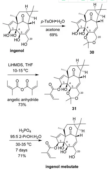 图9.Ingenol mebutate的合成路线