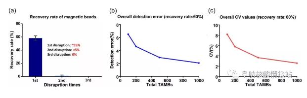 图4 磁珠的回收率及其对检测的影响。